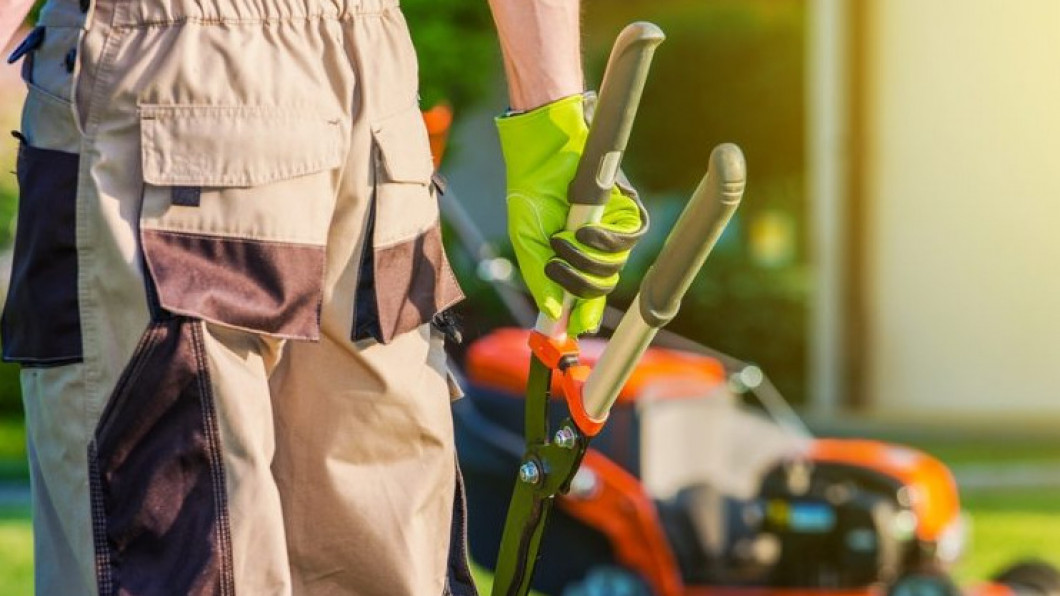 Lawn Care Services in Statesville and Hickory, NC